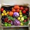 Pet vrsta povrća koje je bolje jesti kuvano