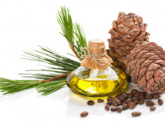 Kedrovo ulje brine o lepoti i zdravlju