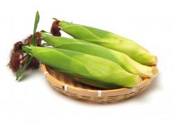 Kukuruzna svila – broj 1 za bubrege