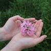 Pogled u organizam: Šta nam sve otkrivaju dlanovi?