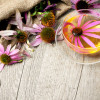 Najefikasnije biljke protiv tumora