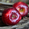 Korisna svojstva jabuka