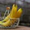 Banana za bolje sportske rezultate