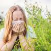 Zašto nastaje alergija na ambroziju